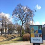 Rauma 575 vuotta juliste katumainoksena kuvataidekoululaisten yhteistyö 2017