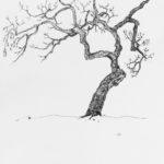 Luova piirustus Puu lyijykynällä