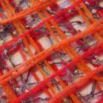 vapaalankavanutus oranssi
