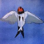 Rauman kuvataidekoulu 2018 peruskurssilaisten pastellitöitä aiheena linnut