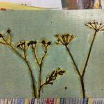 Helin vedoslevy collagrafian tekniikalla luonnon kasveista