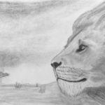 Ossi, Urosleijona savannilla, lyijykynäpiirros