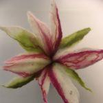 Valko-puna-vihreä kukka