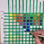 Kalligrafian värikurssi (25)