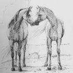 Kosketus, kaksi hevosta - Minna