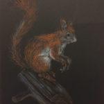 Orava pastelliliitupiirros mustalle paperille - Outi