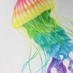 Sateenkaaren värinen meduusa puuväreillä - Draguel - Nita