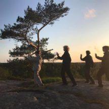 4 henkilöä tekee taiji -liikkeitä kalliolla auringon laskiessa