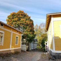 Vanhan Rauman syksyinen katunäkymä. Värikkäitä puutaloja ja syksyinen puu.