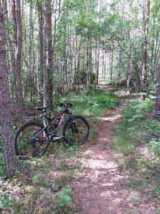 Maastopyörä Latumajan reitin polkuosuudella.