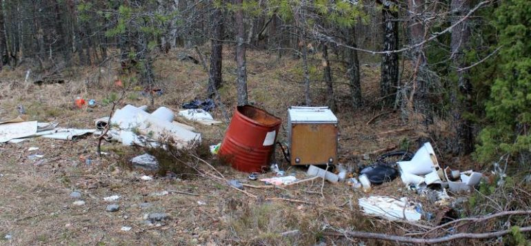 jäte. jätteet, roska, metsä, jätehuolto