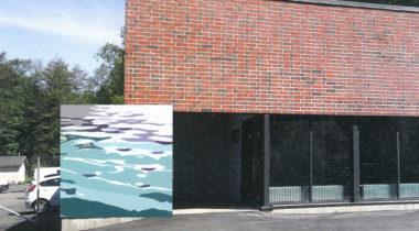 Pinta-seinämaalaus, Rauman Vesi, Mollu Heino