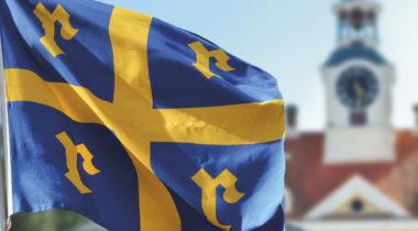 Rauman kaupungin sinikeltainen lippu
