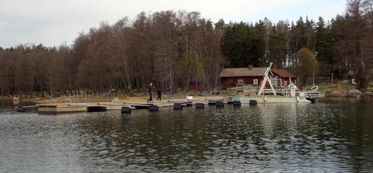 Päivärannan uusi laituri paikoillaan Nurmeksessa.