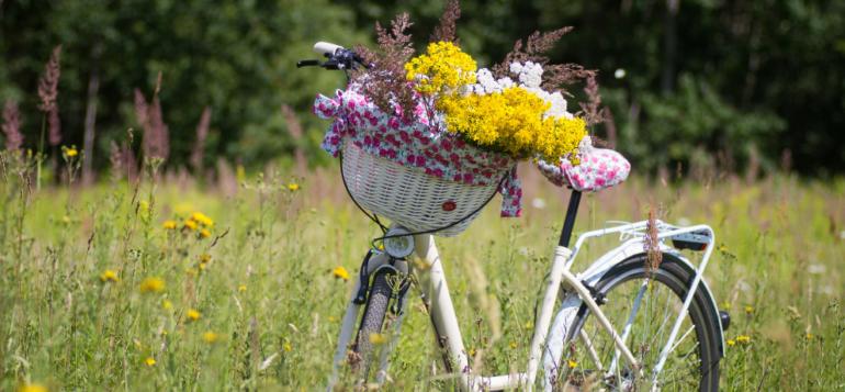 Valkoinen pyörä peltomaisemassa, pyörän korissa värikkäitä kukkia.