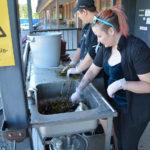 Nuorten työpajalla työskentelevät Jonna ja Toni tutkimassa meriroskiksen sisältöä.