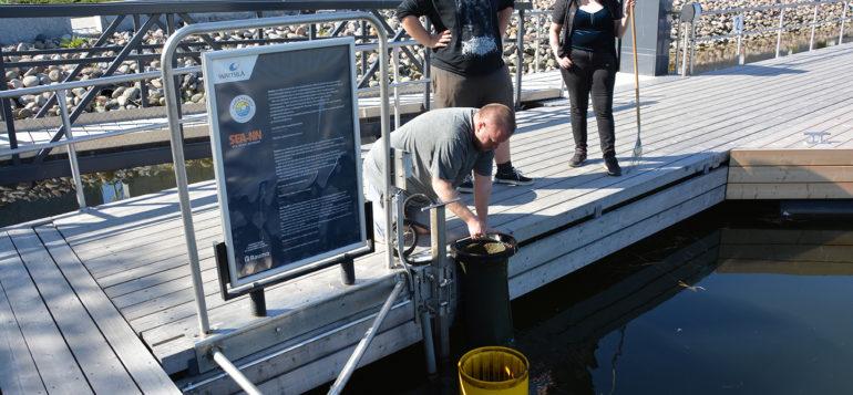 Nuorten työpajalaiset puhdistamassa meriroskista, Kai Salonen nostaa meriroskiksen vedestä.